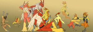 Torchic Line Group Picture by Iron-Zing