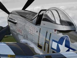 Mustang 'Janie' P51 by davepphotographer