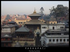 Pashupatinath Temple by darklord977
