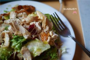 Summer Chicken Salad by emilythestranger