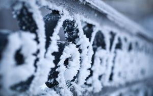 Frost 7 by Henrikson