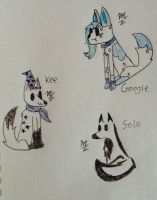 The Derp Collection by Keetone