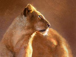 Lioness by Bowkl