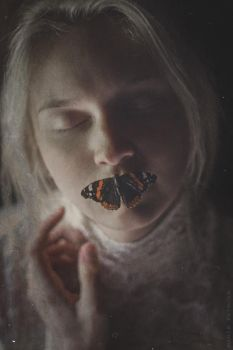 Dream of a butterfly II by MariaPetrova