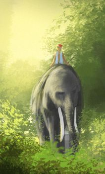 Elephant Rider by prash666
