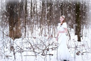Snow Princess 6 by stargirlphotography
