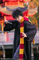 Harry Potter by IchigoKitty