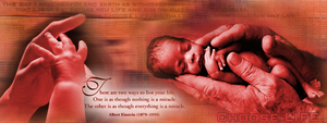 pro-life by totaldevotion