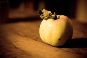 simply an apple by Wurstgulasch