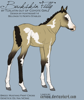 Buckskin Filly for NorthStable by Huntress614