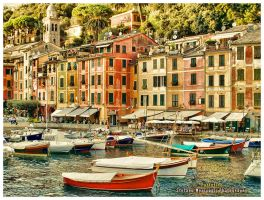 Portofino by Direct2Brain