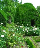 Levens Hall 142 by Forestina-Fotos