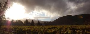 Napa Valley Sunset 2 by rebekahlynn-photo