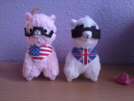 America and England USUK Alpacas by pastalover45