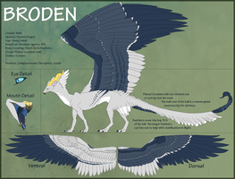 Broden Reference Sheet by Zenhi