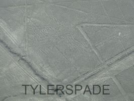 Nazca lines: The Spider by Tylerspade