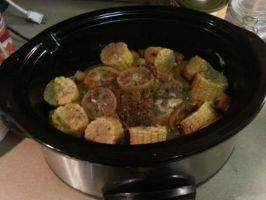 Crock Pot Roast Chicken  by adamnorde583