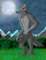 Under the fullmoon by WhiteRoo