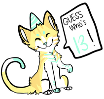 ITS MY BDAY :D by starlightzs