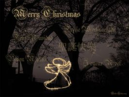 Merry Christmas, Happy Holiday by Hiersein