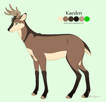 Kaeden Reference Sheet by mirzers