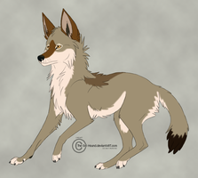 Coyote by FoxHole09