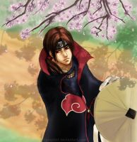 Naruto - Spring by nymphvt