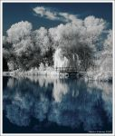 IR Lake Shore by hquer