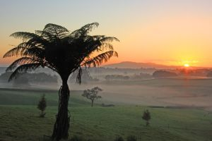 Waikato Dawn by Capturing-the-Light