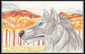 Autumn Wolf by bellathecatartist