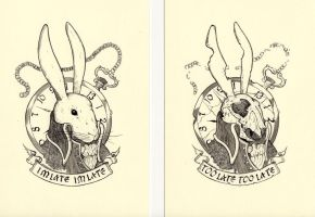 White Rabbit by jmdragunas