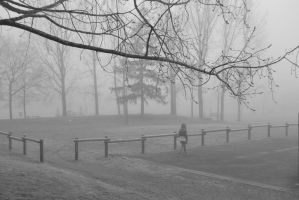 Brume #2 by Dese-M