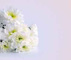 Bouquet of Flowers by Tumana-stock
