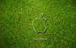 Apple Grass by BVeffects