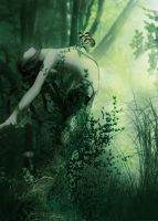 Dryad Morning by Muireanne
