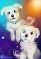 Cooper and Pippa by mmishee