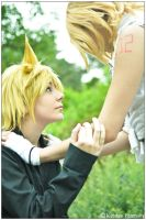 Vocaloid: Angel Protecting by CosplayerWithCamera