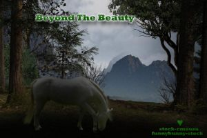 Beyond The Beauty by lesliemarie-manips
