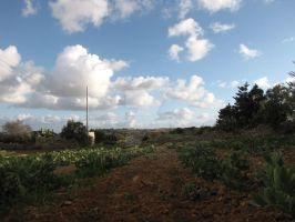Through The Ploughed Fields by Maltese-Naturalist