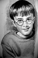 Harry by joniwagnerart