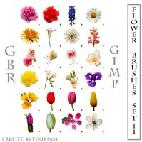gimp flower brushes set 11 by feniksas4