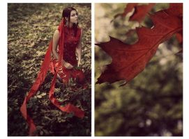 Last fall by Silecia