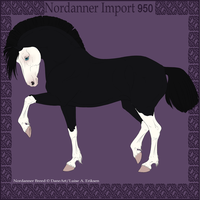 Nordanner Import 950 by DovieCaba