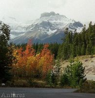 Colorful Canada in the fall by Antares2