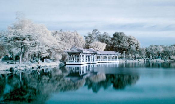 IR at Chinese Garden by bluetears76