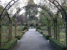 The Rose Arch by Tielle