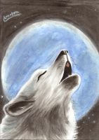 Wolf Moon by ArantxaCosplayer