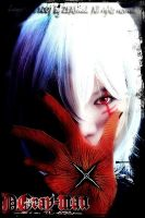 Cosplay : Allen -D.Gray Man- by Zeasonal
