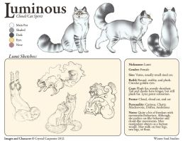 Luminous Character Sheet by soulofwinter