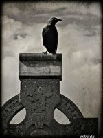 The Silence Of The Cemetery by Estruda